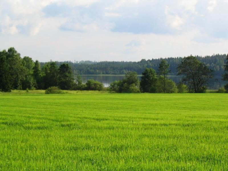 Karhusjärvi