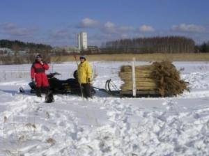 Niput ajettiin Riennon moottorikelkalla Pentti Vainikan riihelle joka toimi varastopaikkana