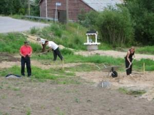 Puiston maapohja on erittäin rehevää. Sen hoitamisessa riittää haastetta pitkälle tulevaisuuteen