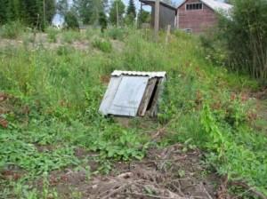 Tontin takaosassa oli vanha kaivo jonka kansiosa oli huonossa kunnossa. Alkusuunnitelmiin kuului kaivon täyttämnen maa-aineksella. Sitten huomattiin että kaivossa on hyvä vedentuotto ja vesi näytti kirkkaalta