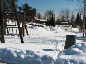 Puiston ensimmäinen talvi alkaa vaihtua kevääseen. Kuvattu maaliskuussa 2008